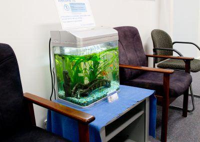 Remedial Massage - Joondalup Sports Remedial Massage Treatment Happy Fish